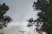 Με το πρώτο φως της μέρας τα εναέρια μέσα απέτρεψαν τη φωτιά στην Οκτωνιά- Γλύτωσε ο Γαβαλάς